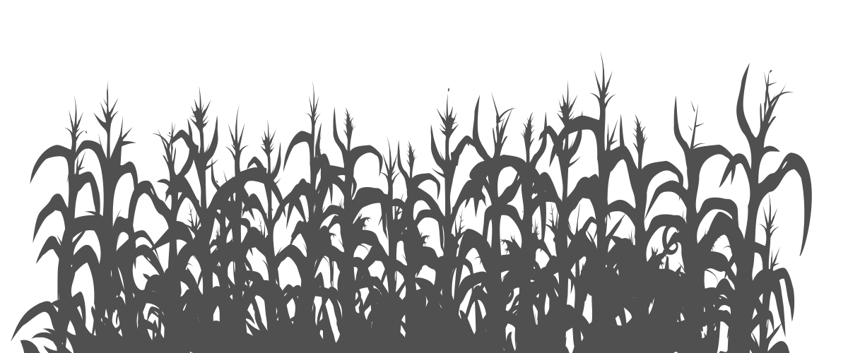 The gallery for --> Corn Stalk Silhouette